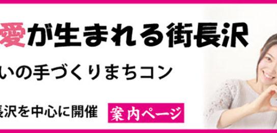 長沢まちコン(川崎市多摩区)